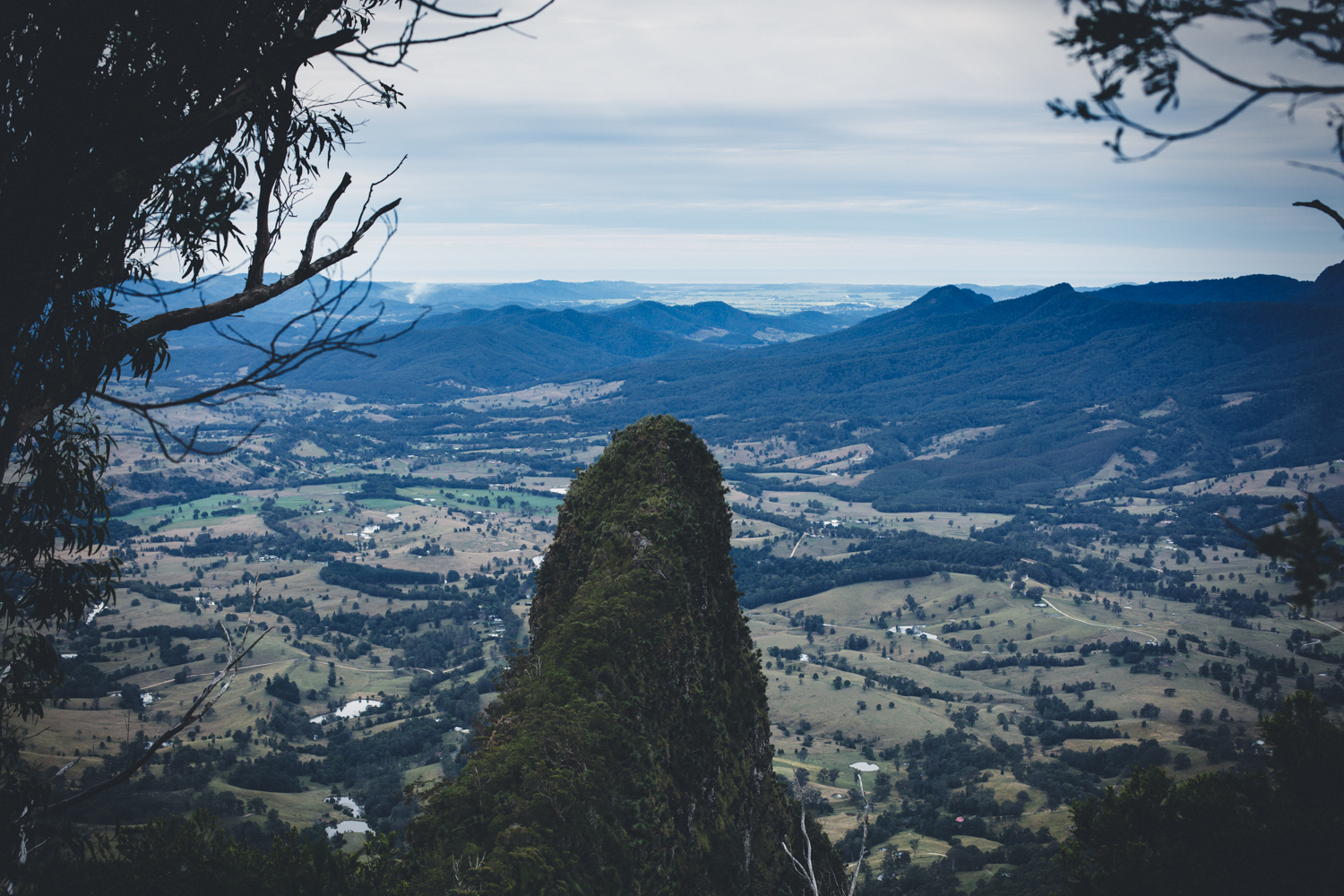 The Pinnacle Border Ranges National Park